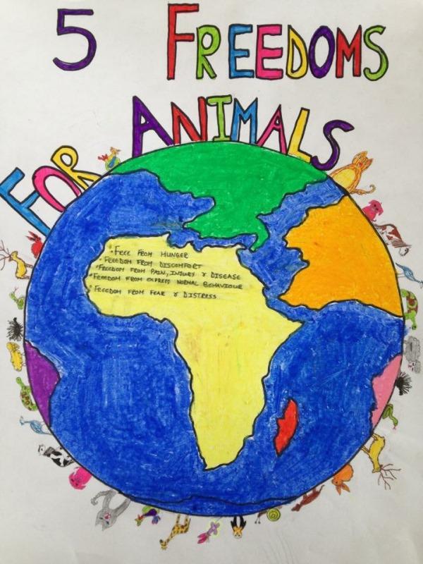 humane-education